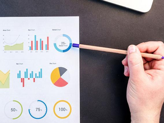 person looking at data charts